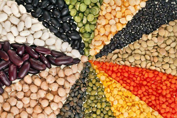 legumes_wellness_food_diet_lake_of_Como