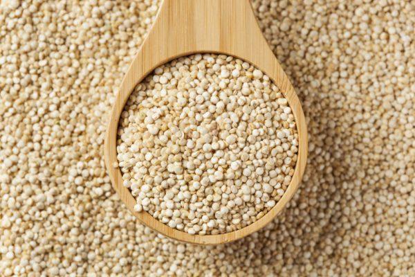quinoa-benessere-nutrizione